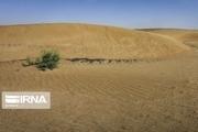 فرماندار: ۶ طرح بیابان زدایی دلگان آماده افتتاح و کلنگزنی است