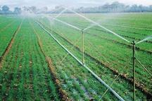 106 طرح کشاورزی در قزوین به بهره برداری می رسد