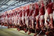 1361 تن انواع گوشت در چهارمحال و بختیاری توزیع شد