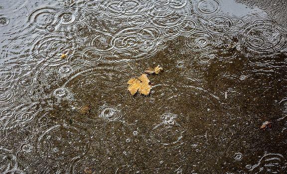 رشد ۲۶ درصدی بارشها در آذربایجان غربی