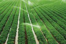 طرح آبیاری نوین در 33 هزار هکتار زمین کشاورزی اجرا شد