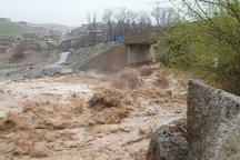 سیلاب و تگرگ 260 میلیارد ریال به بخش کشاورزی دلفان خسارت زد