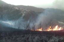 آتش سوزی جنگل های سیاهکل خاموش شد