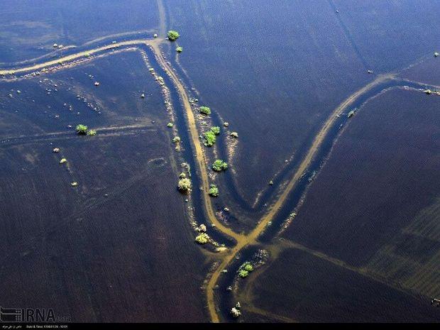 تایید پرداخت تسهیلات به ۱۷۷ پرونده زمین کشاورزی خسارت دیده از سیل درکارون