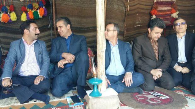 اجرای طرح پرواربندی دامهای عشایری استان تهران موفق بود