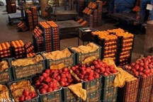 50 تن میوه شب عید در مهاباد توزیع شد