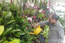 توسعه پرورش گل و گیاه در آستارا حمایت مسئولان را می طلبد