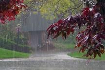 میزان بارندگی ها در کردستان 275 درصد افزایش یافت