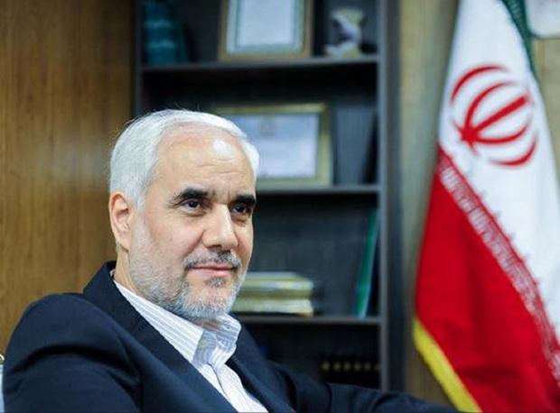 مهرعلیزاده: خدشههایی طی انتخابات وارد شد که هدفی مشخص داشت
