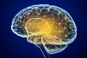 مشکلات قلبی باعث اختلال در مغز می شود