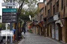 عضو هیات علمی دانشگاه شیراز: مردم برای سلامت خود و دیگران همچنان در خانه بمانند