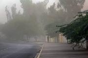 هواشناسی هشدار داد؛ وزش باد شدید در تهران