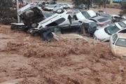 عامل اصلی سیل شیراز اعلام شد