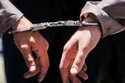 دستگیری عامل ۴۵ فقره سرقت در کرج