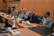 ۲ درصد توفانهای حارهای دنیا جنوب ایران را تحت تأثیر قرار میدهد