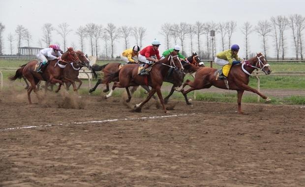 هفته بیست و یکم مسابقات اسبدوانی زمستانه گنبد برگزار شد