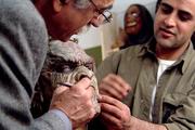 گفتوگو با هنرمندان درباره گریم بازیگران در سریالهای تلویزیونی