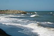 حال دریای خزر خوب نیست/ ساحل ایران آلوده ترین بخش خزر