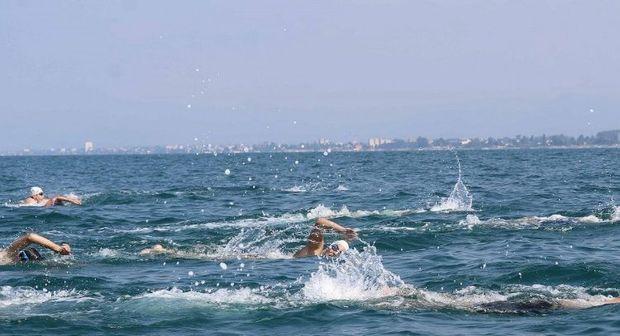 برترینهای لیگ شنای آبهای آزاد کشور معرفی شدند