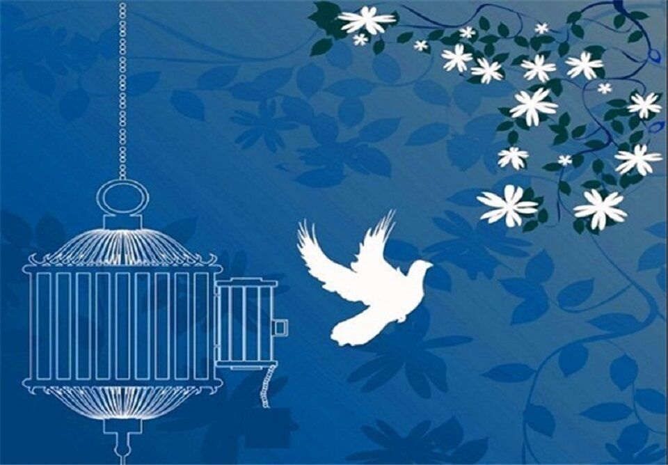 آزادی 6 زندانی جرائم مالی در ماکو