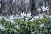 کاهش ۳۶ درصدی بارندگی در چهارمحال و بختیاری