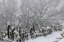 بارش برف بهاری در آواجیق چالدران  عکس