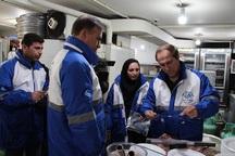 مراکز عرضه مواد غذایی همدان بیش از 10هزار بار بازدید شدند