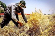 جمع آوری زکات در آذربایجان غربی بیش از 60 درصد افزایش یافت