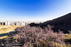 مسیر قله چین کلاغ