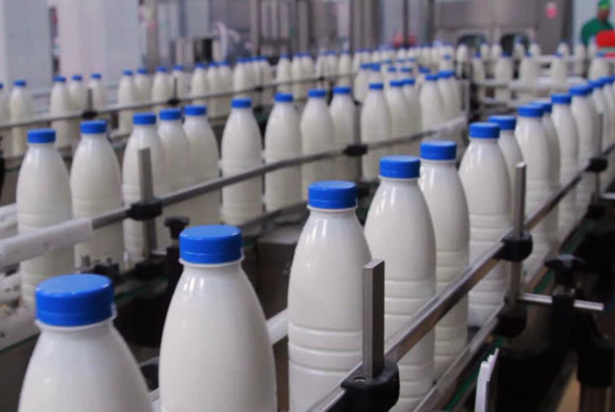 شیر و لبنیات بازهم گران تر خواهند شد!