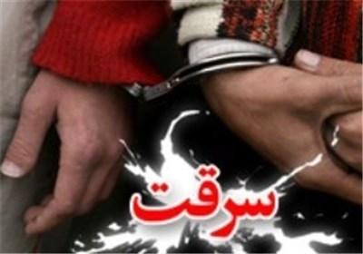 زنی که بچههای خود را طعمه سرقت میکرد، دستگیر شد