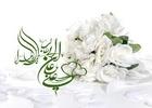 شادمانه ازدواج حضرت علی علیه السلام و حضرت زهرا سلام الله علیها/ میثم مطیعی+ دانلود