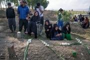 گل بانوهای کرمانشاهی برای خاک هم مادری میکنند