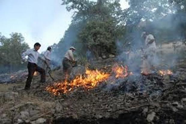 بیش از 100 هکتار اراضی حفاظتی مازندران نوروز امسال در آتش سوخت