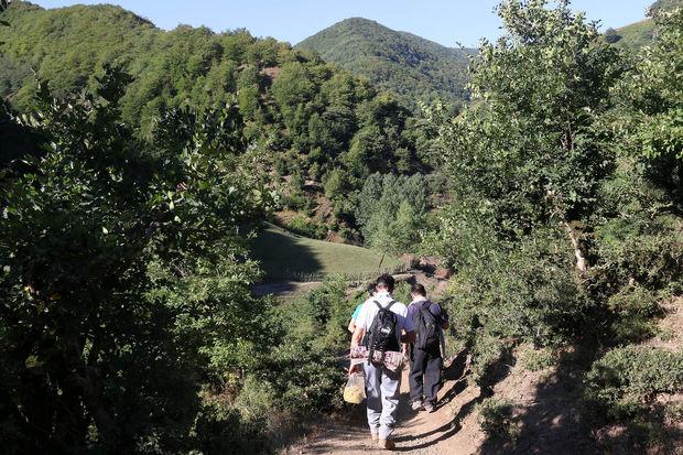 گردشگران مفقود شده در ایلام پیدا شدند