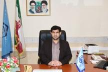 80 درصد جمعیت استان بوشهر زیرپوشش بیمه تامین اجتماعی است