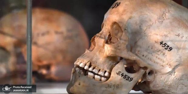 نسل کشی اروپاییان در آفریقا: آلمان در نامیبیا؛ فرانسه در روآندا