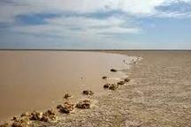 حرکت سیلاب به سمت شمال سیستان و بلوچستان  امیدواری به تغییر محیطزیست منطقه با پرآب شدن هیرمند