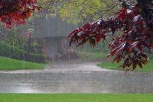 بارش باران، شهروندان آستارا را در روز طبیعت خانه نشین کرد
