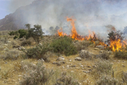 مهار آتش سوزی در مزرعه گندم پیشوا