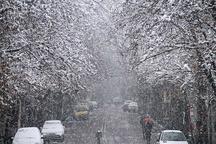 آماده باش نیروهای خدمات شهری تهران برای برف روبی و پاکسازی معابر