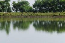 ساماندهی آب بندان های ماسال سرعت گیرد