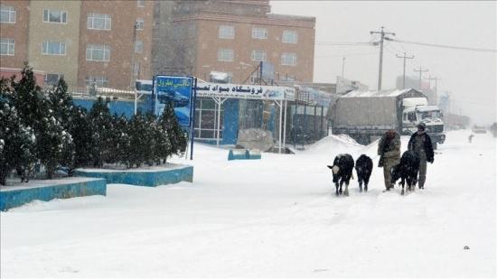 برف افغانستان