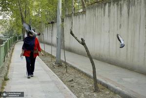 منتخب تصاویر امروز جهان- 28 فروردین 1400