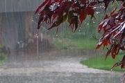 بارندگی پاییزه خراسان شمالی 184 درصد رشد داشت