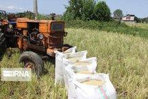 کشاورزان مازندرانی امسال پنج هزار میلیارد ریال تسهیلات دریافت کردند