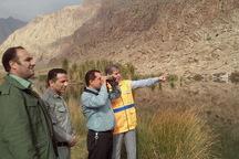 طرح پایش بیماری آنفلوانزای پرندگان در کرمانشاه اجرا می شود