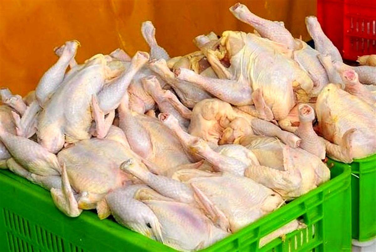قول معاون اول رئیس جمهور در مورد مرغ! + فیلم