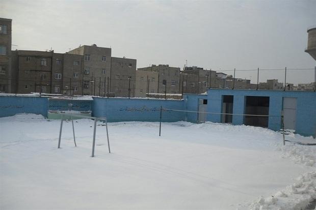 برف مدارس سه شهرستان فارس را تعطیل کرد