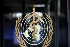 سازمان بهداشت جهانی:خطر شیوع طاعون خیارکی در چین فعلا رفع شده است